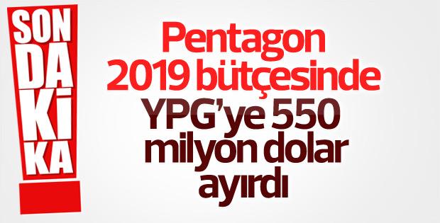 Pentagon 2019 bütçesinde YPG'ye ayırdığı bütçeyi açıkladı