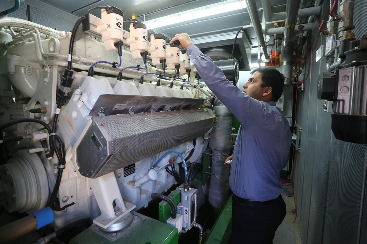 Filistinde Elektrik üreten Süt Fabrikası