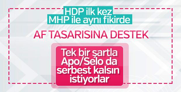 HDP'li Gergerlioğlu genel af çağrısı yaptı