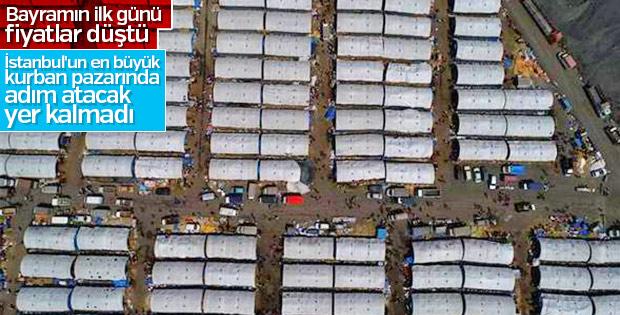 Sultangazi'de kurban pazarında yoğunluk
