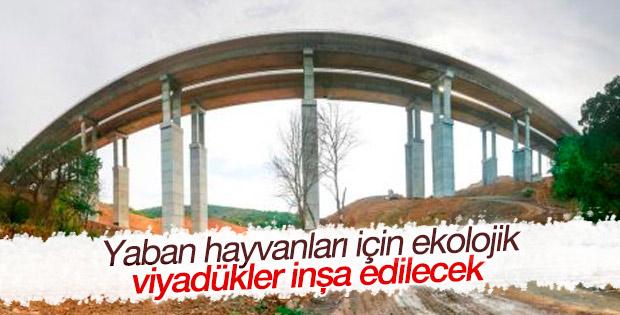 Kuzey Marmara Çevre Yolu'na ekolojik viyadükler yapılacak