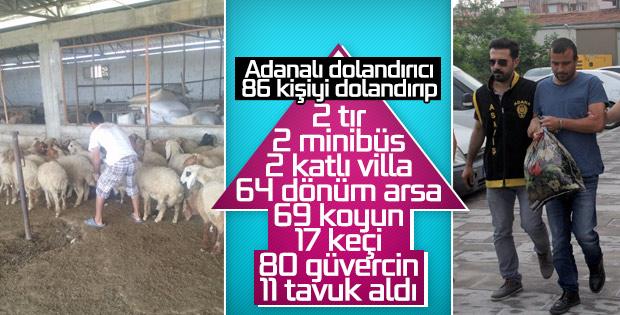 86 kişiyi dolandırıp çiftlik kurdu