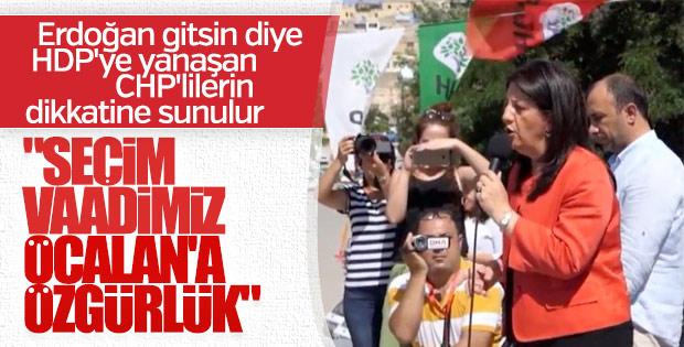 HDP'nin seçim vaadi: Öcalan'a özgürlük