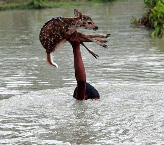 Bangladeşli Bilal'den insanlık dersi