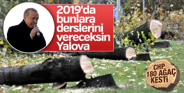 Cumhurbaşkanı Erdoğan CHP'nin ağaç katliamını unutmadı