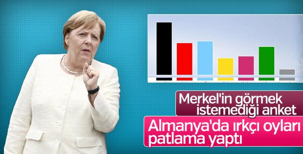 Almanya'da ırkçı parti AfD'nin oyları yükseliyor