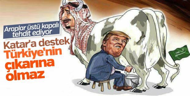 BAE'den Türkiye'ye Katar tehdidi