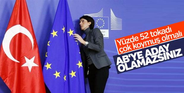 Avusturya, Türkiye'nin AB üyeliğine karşı