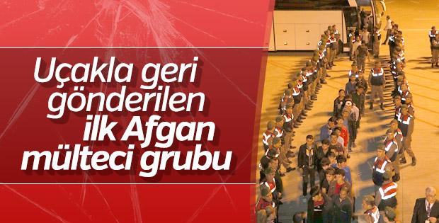 İzmir'de 324 kaçak göçmen sınır dışı edildi