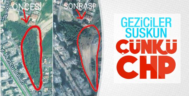 Adana'da CHP'li belediyeden ağaç katliamı