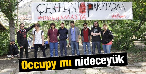 Amasya'da ağaç gerginliği