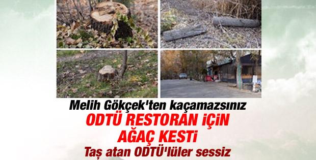ODTÜ restoran için Eymir'de ağaç katliamı yaptı