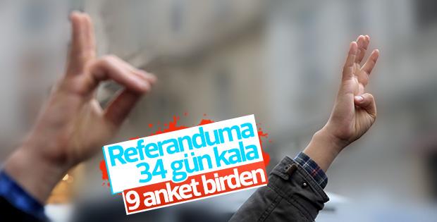 9 anket şirketinin referandum araştırması sonuçları