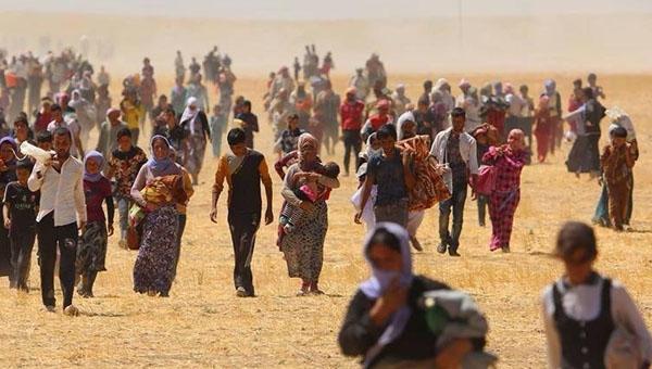 BM'nin Uluslararası Göç Örgütü raporu