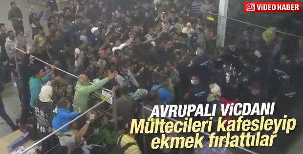 Macaristan'daki kampta mültecilere insanlık dışı muamele