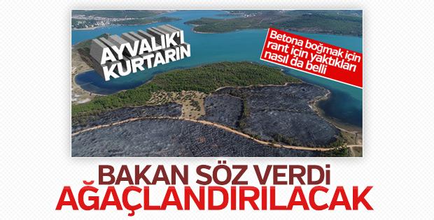 Orman ve Su İşleri Bakanlığı Ayvalık için harekete geçti