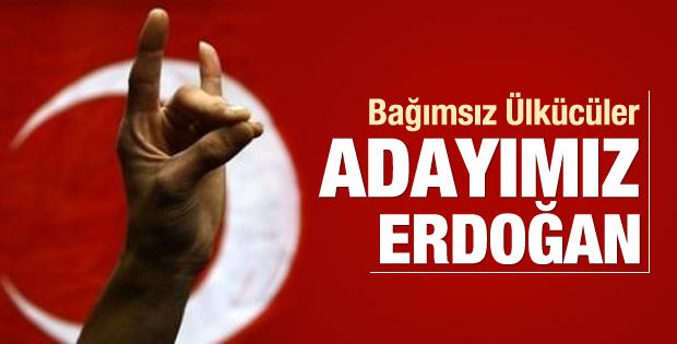 Bağımsız Ülkücüler: Erdoğan'ı destekliyoruz