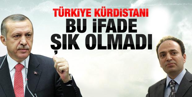 Başbakan: Türkiye Kürdistanı ifadesi şık değil