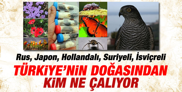 Türkiye biyokaçakçılarla savaşıyor