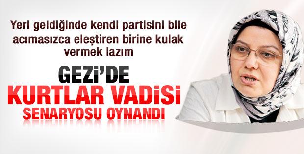 Böhürler: Gezi'de Kurtlar Vadisi senaryosu oynanıyor