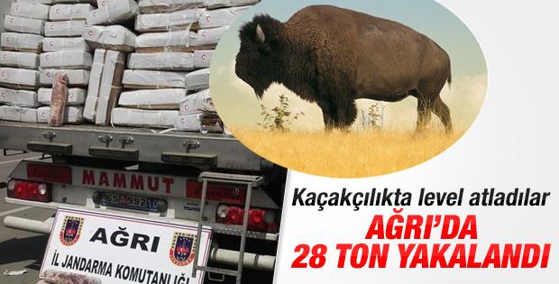 Ağrı'da kaçak bufalo eti ele geçirildi