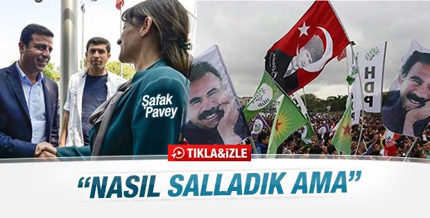 CHP'li Pavey'den HDP'li Demirtaş'a: Birlikte iyi salladık