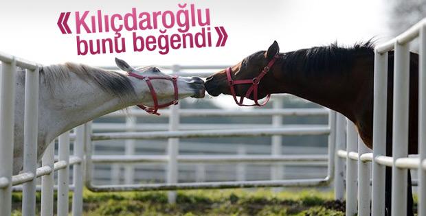 Kılıçdaroğlu AA'nın Yılın Fotoğrafları oylamasına katıldı