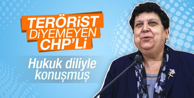 Teröriste eylemci diyen CHP'li: Hukuk diliyle konuşuyorum