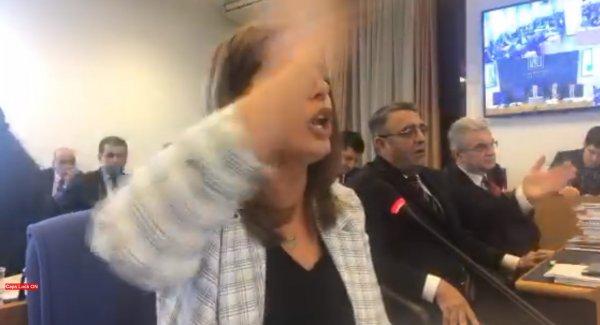 HDP'li Ayşe Acar Başaran'dan Meclis'te küstah sözler