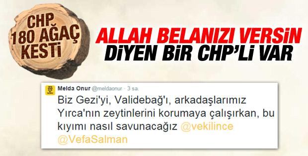 CHP'li Melda Onur'dan Muharrem İnce'ye ağaç tepkisi