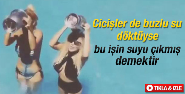 Cicişler Ali Ağaoğlu'na meydan okudu