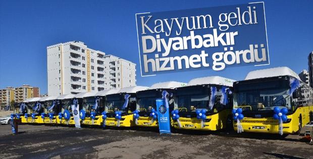 Diyarbakır'a yeni belediye otobüsleri alındı