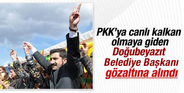 HDP'li başkan PKK'ya kalkan olmaya giderken yakalandı