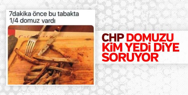 CHP, Türkiye'de satılan domuz etlerini araştırıyor