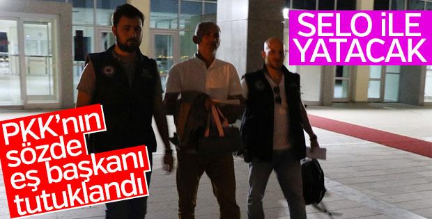 PKK'nın sözde eş başkanı tutuklandı