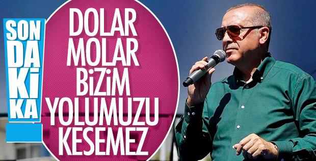 Başkan Erdoğan'dan döviz ve altınları bozdurun çağrısı