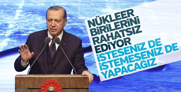 Cumhurbaşkanı Erdoğan nükleer karşıtlarına seslendi