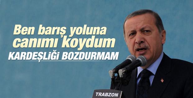 Erdoğan: Barış yoluna canımı koydum