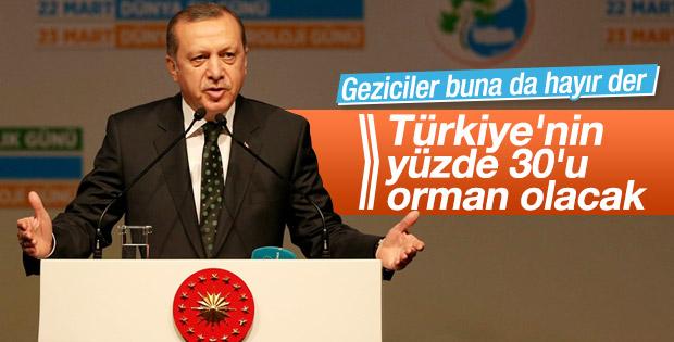 Erdoğan Türkiye Çınar Yılı etkinliğinde konuştu