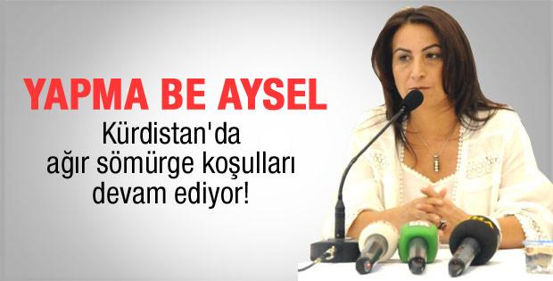 Aysel Tuğluk: Yıl 2012 yer Kürdistan
