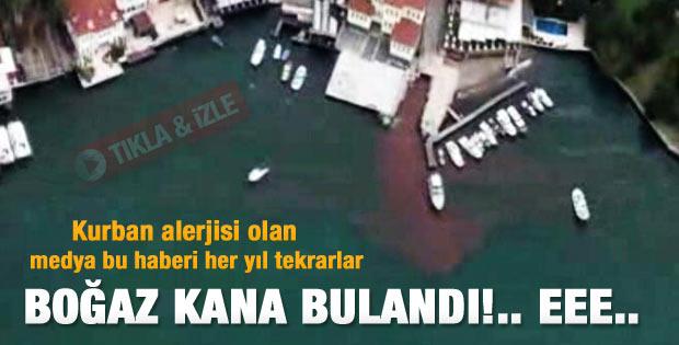İstanbul Boğazı kana bulandı