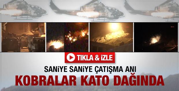 Kobralar Kato Dağı'nı cehenneme çevirdi - Video