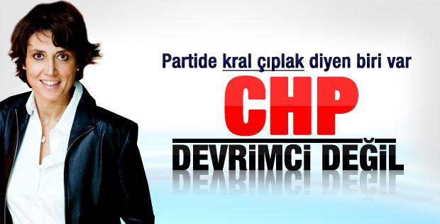 CHP'li Onanç: CHP devrimci  bir parti değil