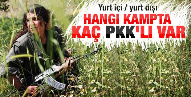 Yurt içi ve yurt dışındaki kamplardaki PKK'lı sayısı