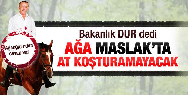Bakanlık Fatih Ormanı tahsisini iptal etti