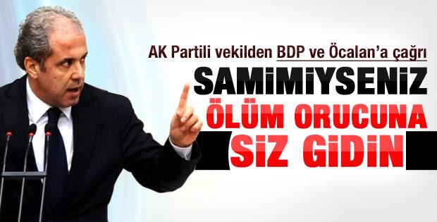 Şamil Tayyar: Öcalan ve BDP ölüm orucuna gitsin