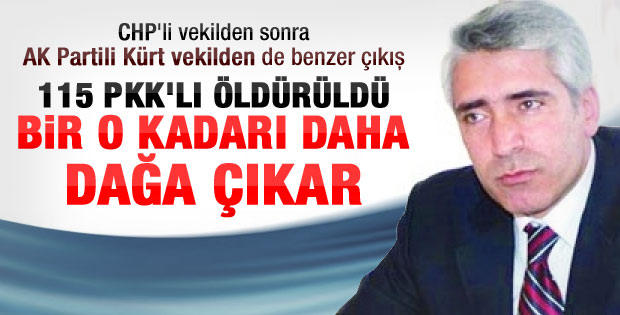 AK Partili Ensarioğlu: 115 PKK'lı daha dağa çıkabilir