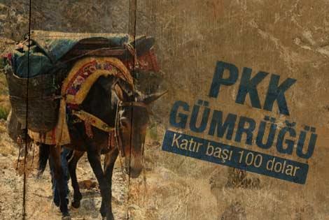 PKK katır başına 100 dolar alıyor