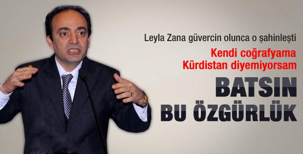 Osman Baydemir: Kürtlerin davası 200 yıllıktır