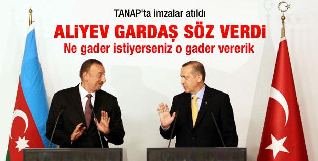 Aliyev gardaşından Erdoğan'a söz